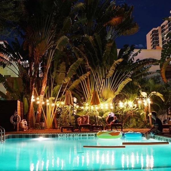 Swimming pool at night at Freehand Miami